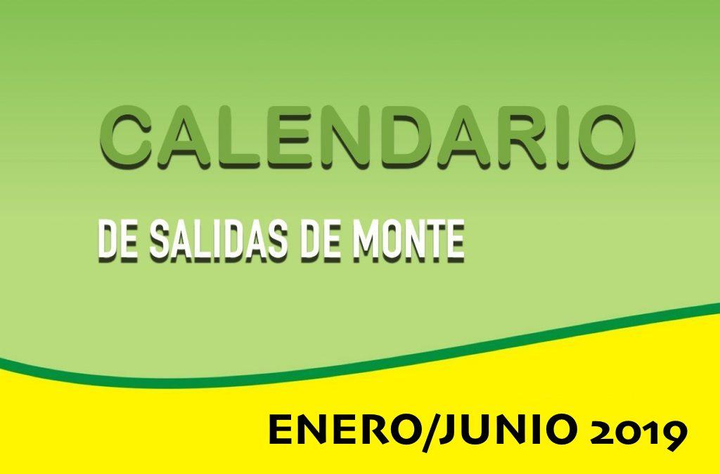 SALIDAS MONTE ENERO/JUNIO 2019